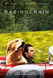 The Art of Racing in the Rain (2019) อุ่นไอหัวใจตูบ